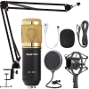ZINGYOU Condenser Microphone Bundle, BM-800 Mic Kit with Adjustable Mic Suspension Scissor Arm, Metal Shock Mount and Double-Layer Pop Filter for Studio Recording & Broadcasting (Gold) (2)